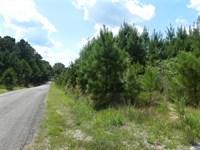 Good Lake Site Near Selmer, TN : Selmer : McNairy County : Tennessee