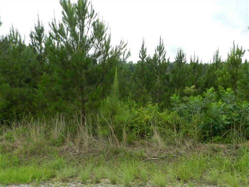 130 Acres, Waddle Road, Itawamba : Fulton : Itawamba County : Mississippi