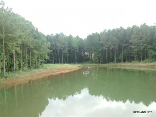 2 Large Rural Home Site Lots : Douglass : Nacogdoches County : Texas