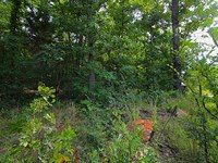 Lot For Sale on Spring River : Mammoth Spring : Fulton County : Arkansas