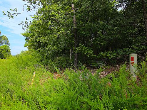 Lot With Spring River Access : Mammoth Spring : Fulton County : Arkansas