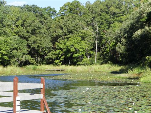 One Acre Lakefront Lot East Texas : Winnsboro : Wood County : Texas