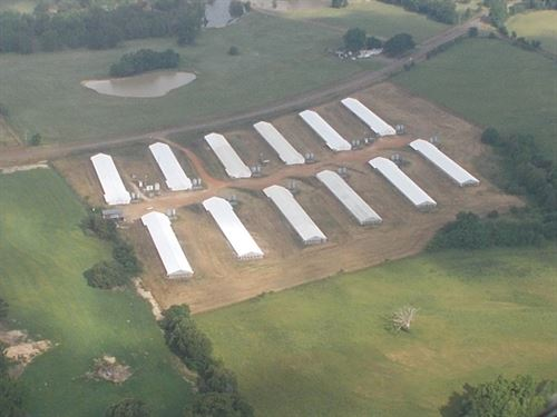 12 House Working Poultry Farm East : Winnsboro : Wood County : Texas