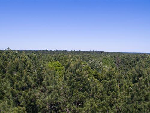 439 Ac Indian Rock : Gilmer : Upshur County : Texas