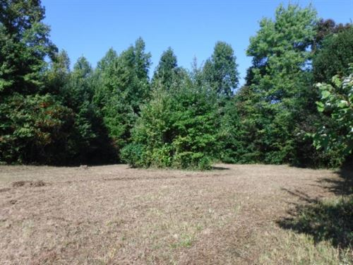 11.70 Acres, Building Sites, Pond : Livingston : Overton County : Tennessee