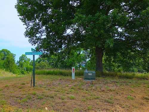 Spring River Lot For Sale : Mammoth Spring : Fulton County : Arkansas