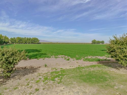 Yolo County Farm Land For Sale : Winters : Yolo County : California
