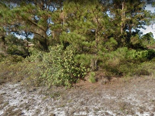 Lee County, .50 Acres, $20,000 : Leigh Acres : Lee County : Florida