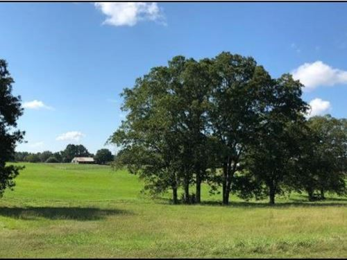 125 Acres In Holmes County In Lexin : Lexington : Holmes County : Mississippi