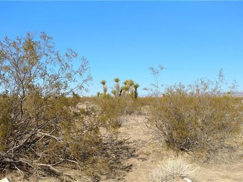 1.13 Acres Price to Sell Golden : Golden Valley : Yavapai County : Arizona