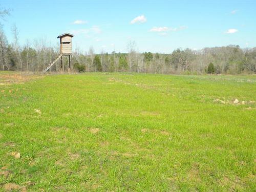 Land Hwy 82, Eupora, MS 39744 : Eupora : Webster County : Mississippi