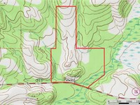 East Texas Land Hunting & Timber : Lindale : Smith County : Texas