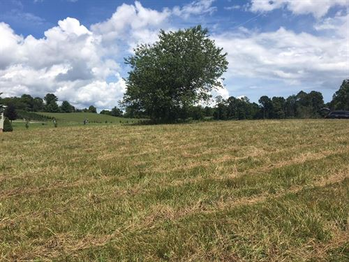 1.23 Acres in Blue Ridge Mountains : Independence : Grayson County : Virginia