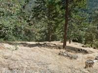 Lot In The San Bernardino Mtns : Cedarpines Park : San Bernardino County : California