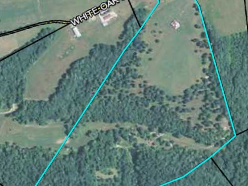 Must See, 57 Acres Mini Farm : Liberty : Casey County : Kentucky