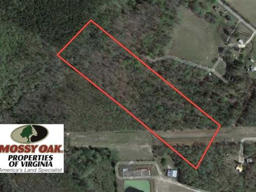 11 Acres of Hunting Land For Sale : Elberon : Surry County : Virginia