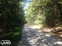 Budapest Road Homesite : Tallapoosa : Haralson County : Georgia