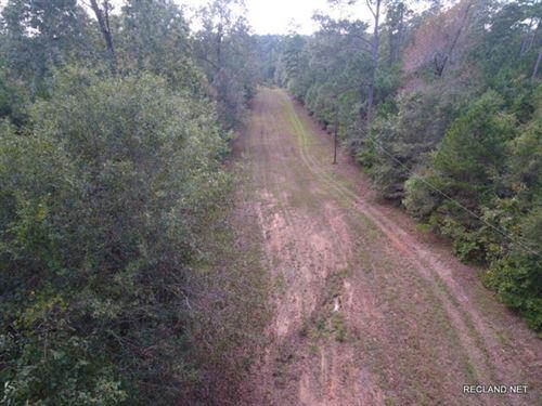 42 Ac, Timberland For Home Site DE : West Monroe : Ouachita Parish : Louisiana