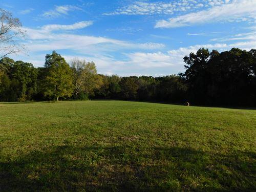 Land Tn, Farm, Investment, Pasture : Adamsville : Hardin County : Tennessee