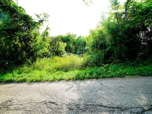 Plantsville Rd, 69 Acres : Chesterhill : Morgan County : Ohio