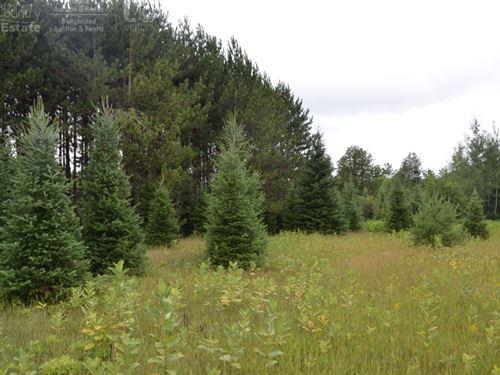 Diverse Land Characteristics : Elderon : Marathon County : Wisconsin