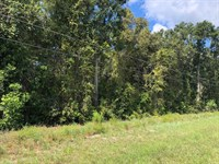 Commercial Lot .58 Acres 776505 : Fanning Springs : Levy County : Florida