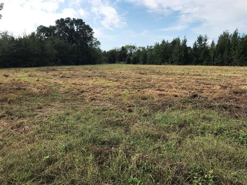 Cousins Farm, 237 +/- Acres : Mulberry : Autauga County : Alabama