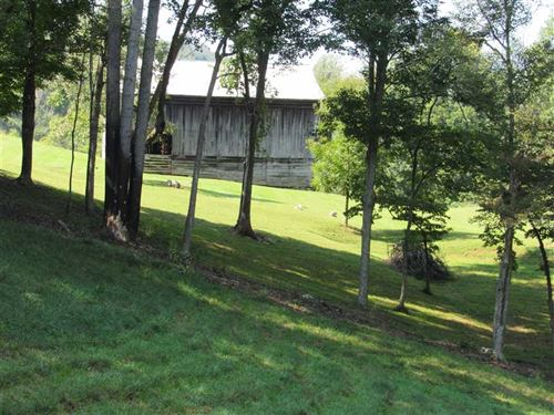 98 Acres With Ridgetop Views, Barn : Sneedville : Hawkins County : Tennessee