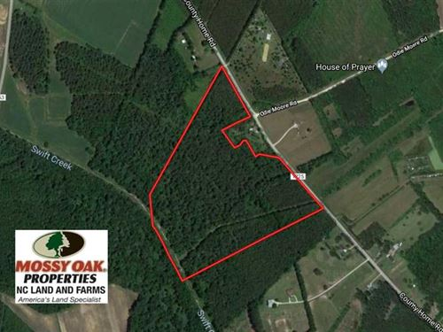 47 Acres of Timber And Hunting Lan : Ayden : Pitt County : North Carolina