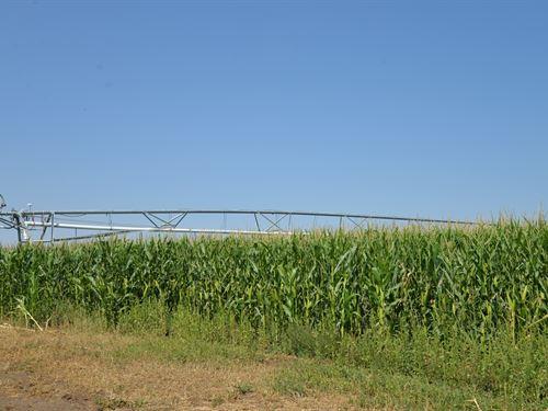 Bent County Colorado Irrigated : Wiley : Bent County : Colorado