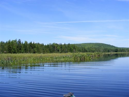 393 Acres Maine Land Oakfield, ME : Oakfield : Aroostook County : Maine