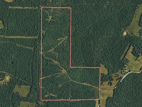 Owner financed land in white county arkansas