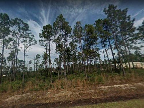 Saint Johns County, Fl $25,000 : Hastings : Saint Johns County : Florida