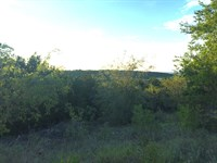 10 Scenic Acres, Great Homesite : Bluff Dale : Erath County : Texas