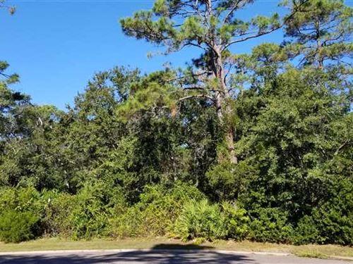 Overlook Lane.46 Acres : Saint Marys : Camden County : Georgia