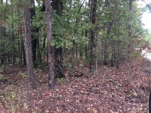 Land, Marketable Timber, Hunting : Houston : Texas County : Missouri