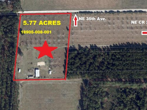 Incredible 5.77 Acres, A-577 : Melrose : Alachua County : Florida