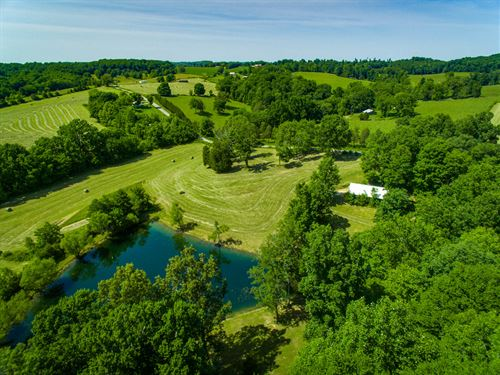 16Ac Farm W/Rustic Hm, Barn, Pond : Gamaliel : Monroe County : Kentucky