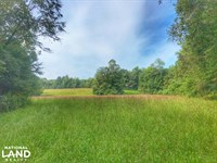 Pine Mountain Tract : Hudson : Caldwell County : North Carolina