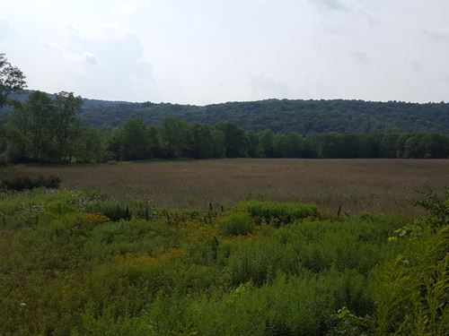 147 Acres Hunting & Farming Land : Preston : Chenango County : New York