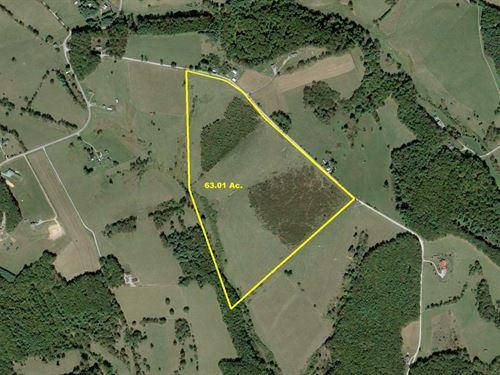 63 Acre Farm : Floyd : Virginia