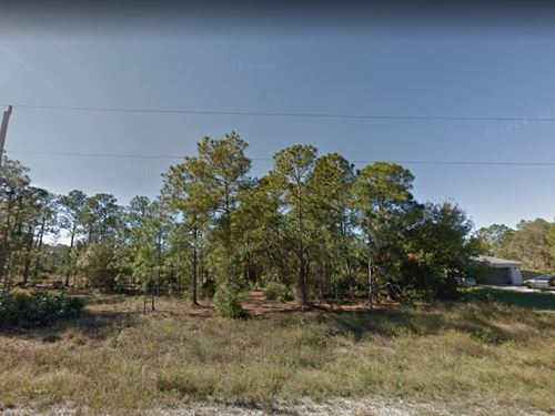 Lee County, Fl $65,000 : Lehigh Acres : Lee County : Florida