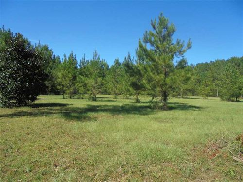 5.13 Acres in Monticello, FL : Monticello : Jefferson County : Florida