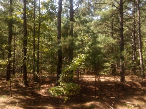 Secluded Homesite : Sanford : Harnett County : North Carolina