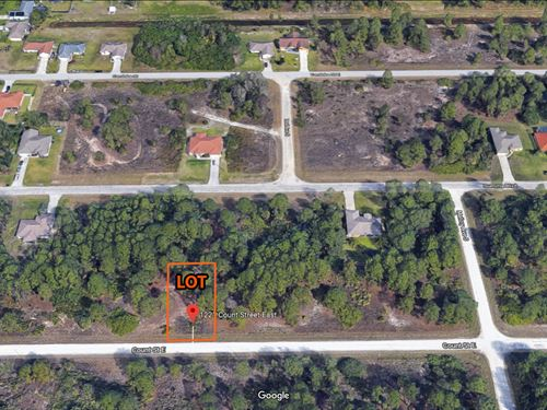 Beautiful 1/4 Lot In Sw Florida : Lehigh Acres : Lee County : Florida