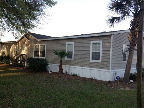 Home And Palm Tree Farm : Live Oak : Suwannee County : Florida