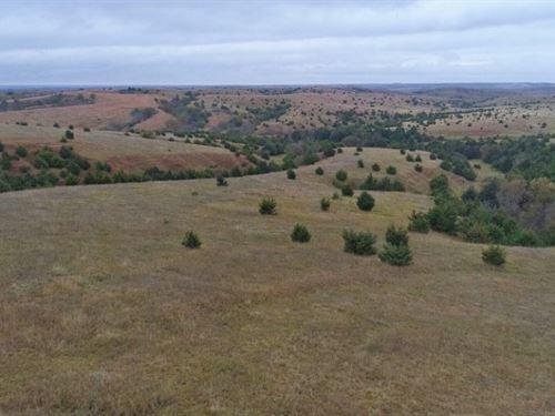 Comstock Rangeland Absolute Auction : Comstock : Custer County : Nebraska