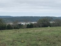 Bull Shoals Lake View 7.78 Wooded : Lead Hill : Boone County : Arkansas