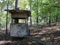 Recreational Land Violet Hll : Violet Hill : Izard County : Arkansas