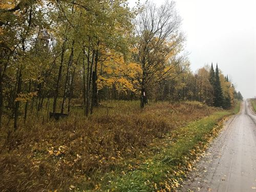 Hunting Land Northern Mn, Kettle : Kettle River : Carlton County : Minnesota